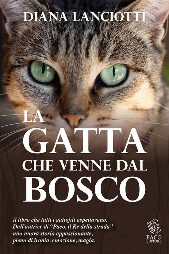 17 FEBBRAIO: FESTA DEL GATTO. Rendiamogli omaggio con un buon libro (e aiutiamo i gatti senza famiglia…)