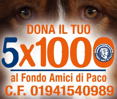Dona il tuo 5×1000 al Fondo Amici di Paco: insieme possiamo fare tanto!